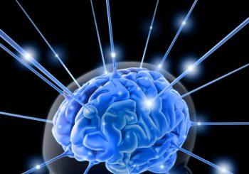 brain power graphic