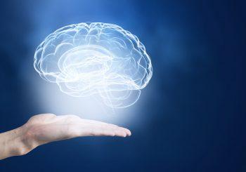 floating brain image